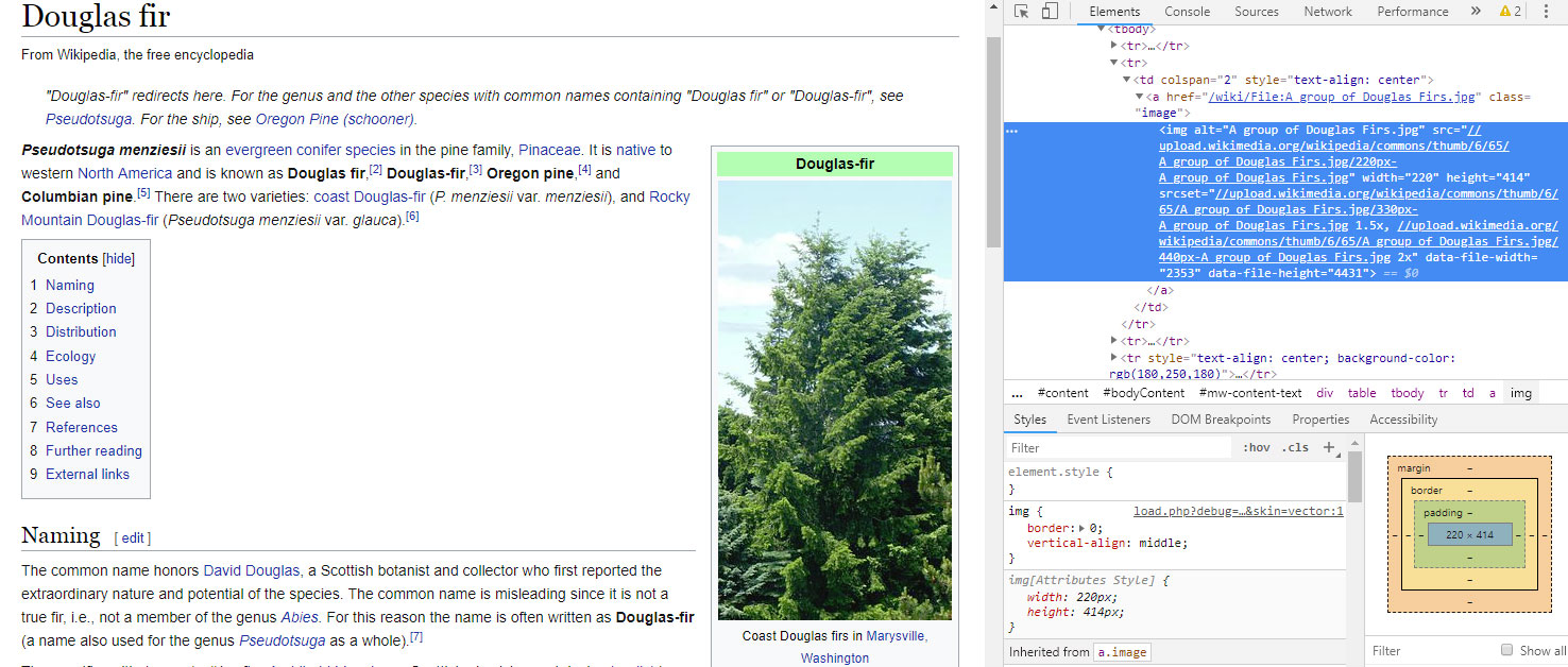 screenshot of wikipedia page for douglas fir with source code presented